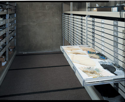 TAB storage desing - markets - art museum special collections stored in mobile shelving